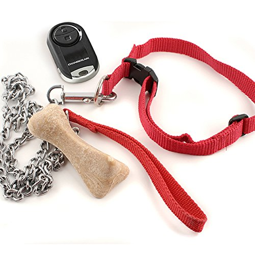 Chamberlain Garage Door Opener Light Keeps Coming On: Universal Garage Door Opener Mini Keychain Remote MC100-6